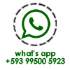 Whats'app